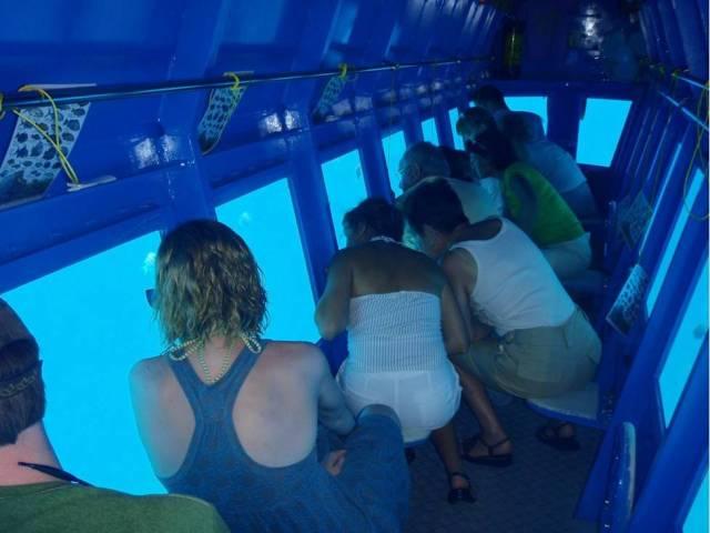 Maldivler 'de Denizaltı turu